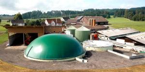 Die 2019 erfolgte Erweiterung umfasst einen gross dimensionierten Gasspeicher, einen 3. Fermenter und eine neue Halle für angelieferte Bioabfälle. (Foto: Wartmann)