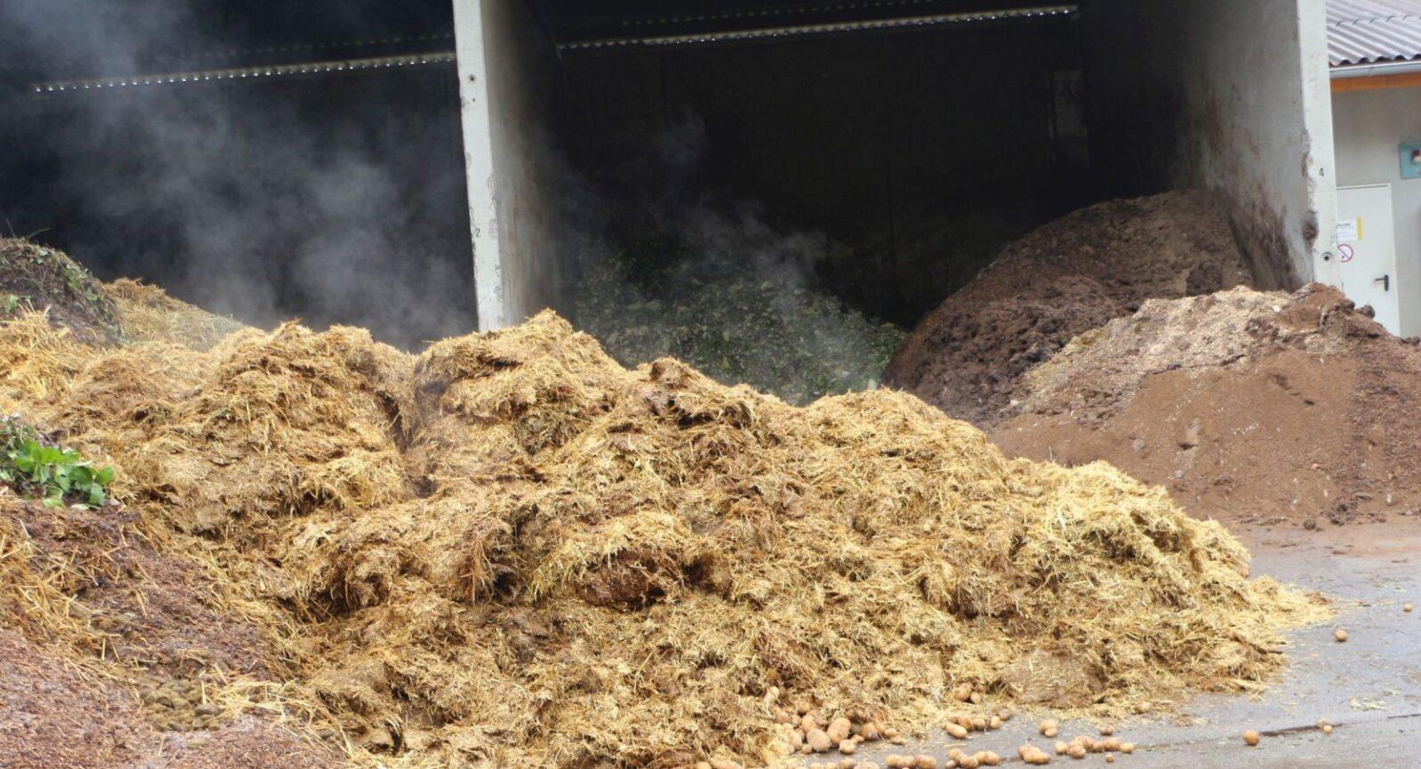 Mist wartet auf die Beimischung im Biofermenter und ist farbenfroh – grün für Rüstabfälle, braun für Hühnermist, hellbraun für Rindermist.